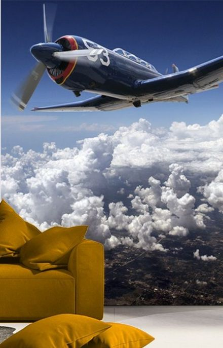 Wallpaper mural Plane - blue sky